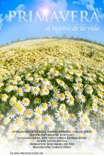 cartel primavera